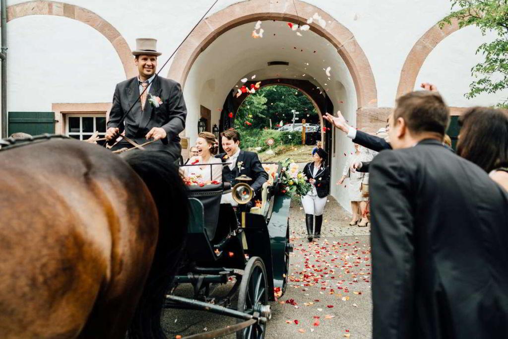 Blog Cornelia und Andreas Einfahrt Pferde