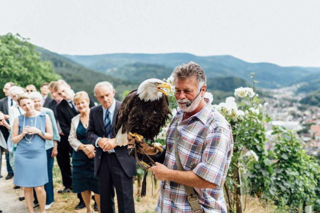 Blog Cornelia und Andreas Gratulation Falkner